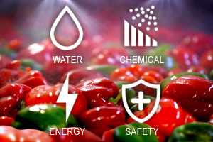 water spraying tomatoes